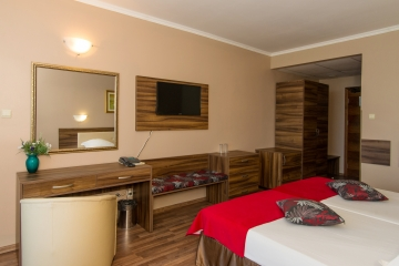 Double Room for Single Use Hotel Regatta Palace